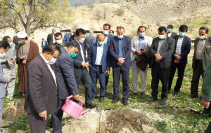 اجرای حکم سبز از سوی دادگاه عمومی چاروستا؛ کاشت ۲۴۰ اصله درخت